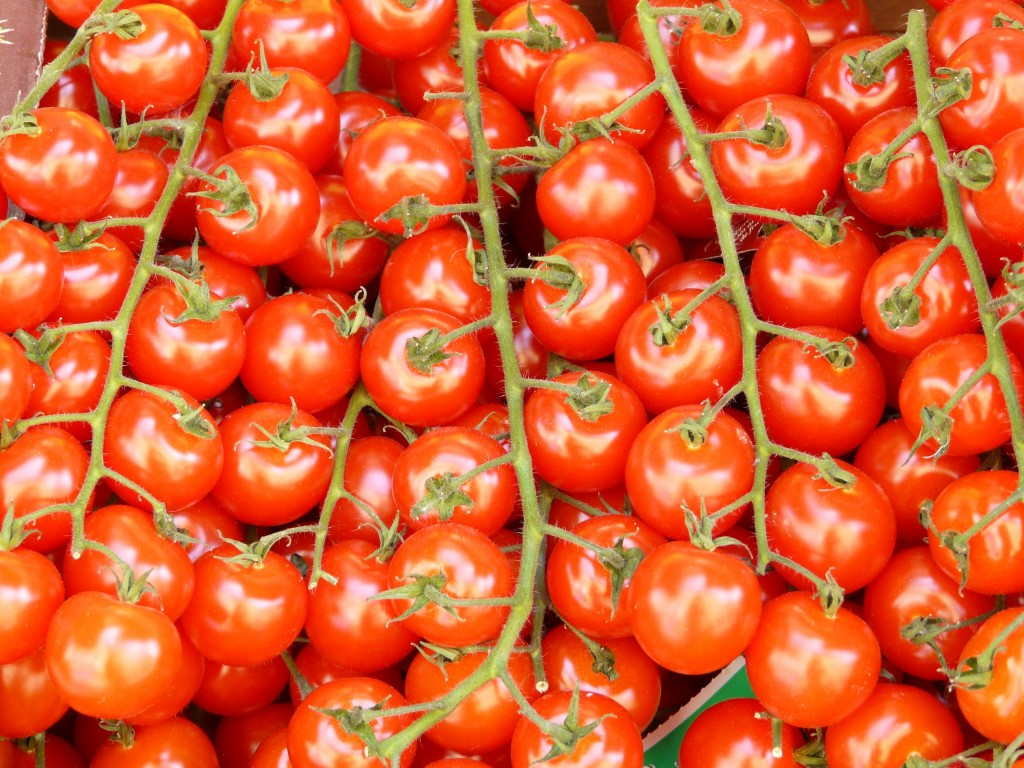 tomatoes-7605