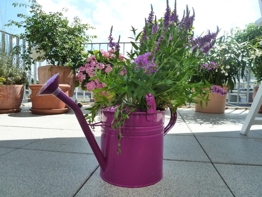 watering-can-169815